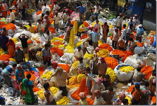 Flower market in Kolkata by Sandra Bowkett